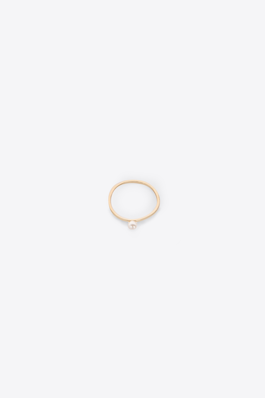 Ring 2564 Gold 1