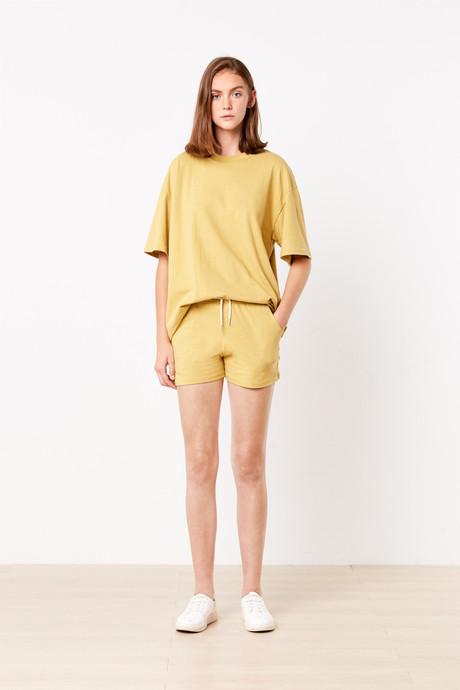 Set H045 Mustard 1