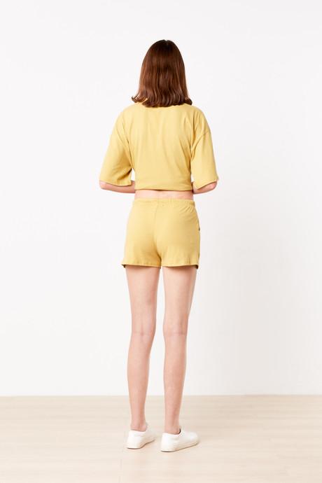Set H045 Mustard 5