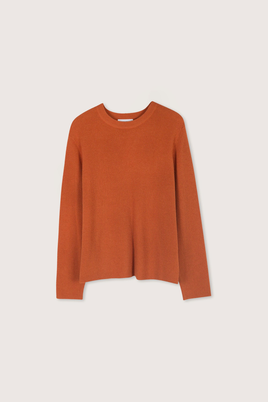 Sweater 2427 Orange 11
